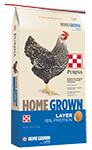 Home Grown Poultry Feeds Chicken Layer