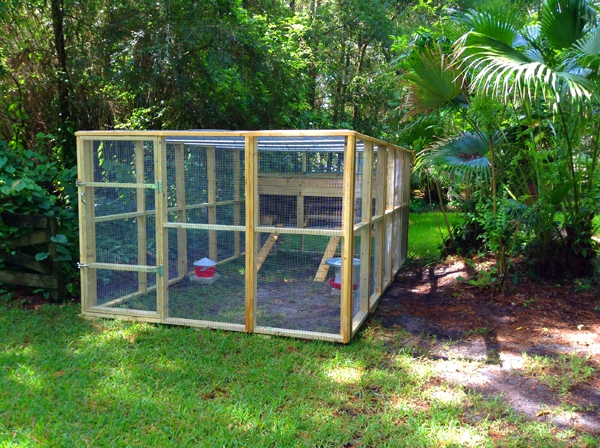 chicken coop for 15 hens 3