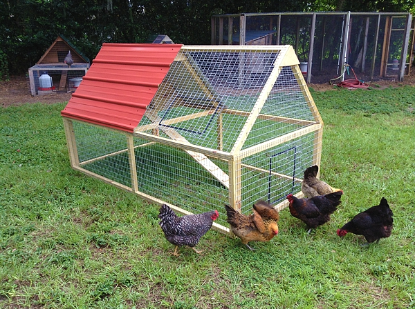 chicken coop for 2 1