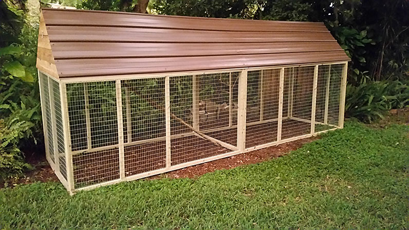 Holloway 39 s farm supply for Chicken coop kits for 12 chickens